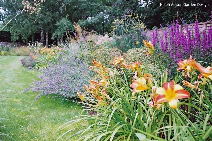 Naturalistic Herbaceous Border by Helen Allison Garden Designer, Suffolk