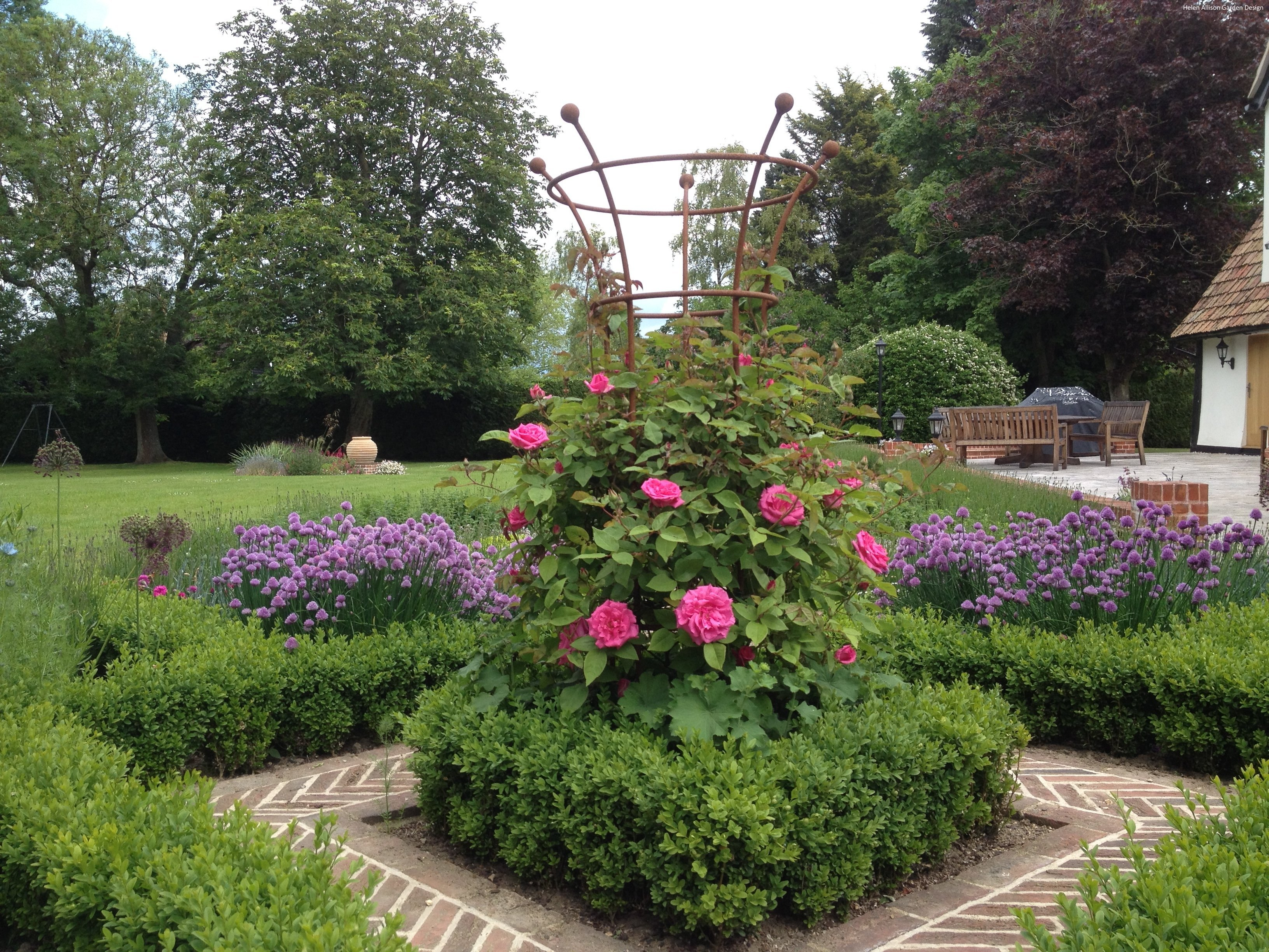 Rose support in herb garden by Helen Allison Garden Design